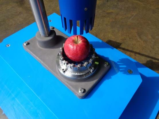 Apple corer / segmenter detail
